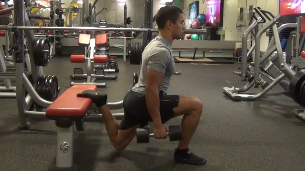 Split Squat Gym Exercises